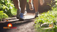 Lauf 10!-Training